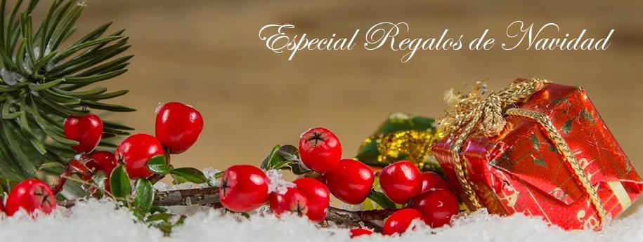 especial-regalos-navidad